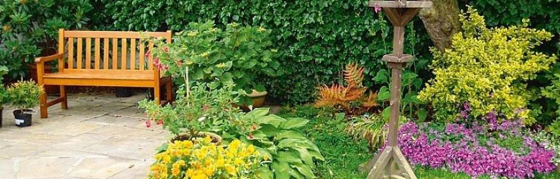 14 простых «фишек», как превратить участок в сад для обложки глянцевого журнала